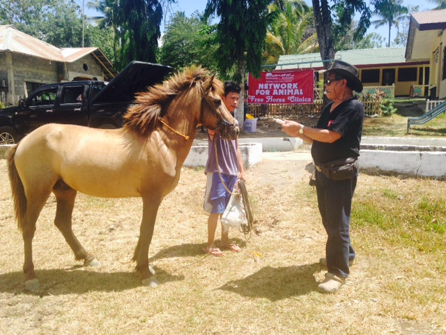 Success: Five Towns Agree to End Organized Horse Fighting 4