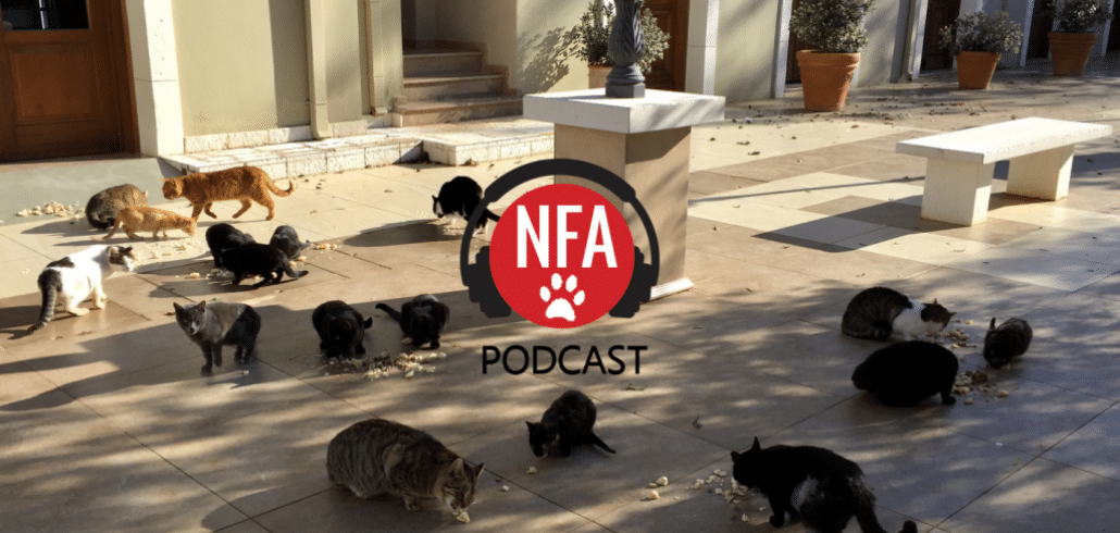 NFA Podcast: CAT KILLING PSYCHOPATH ON THE LOOSE! 1