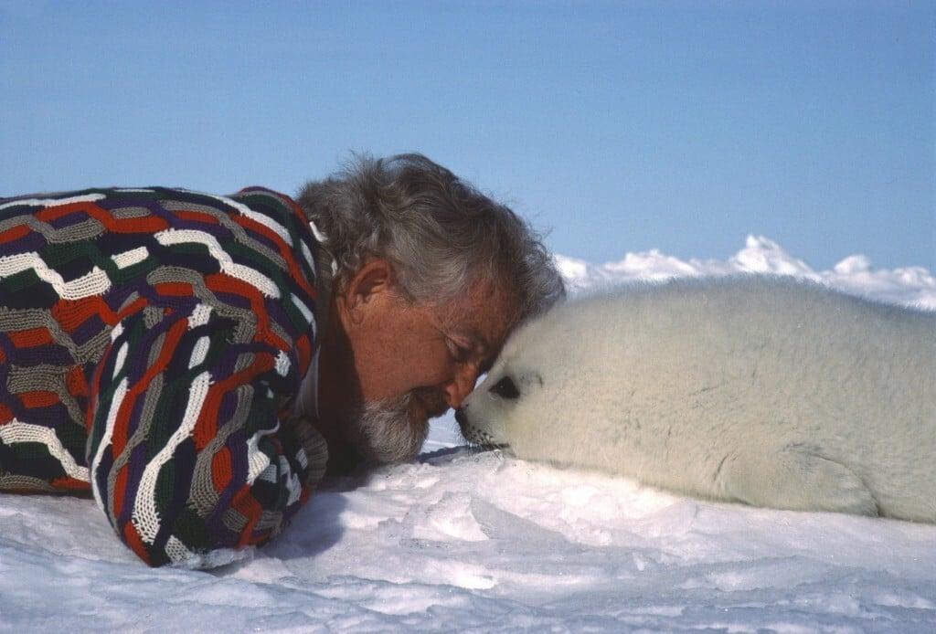 Seal Hunt 1