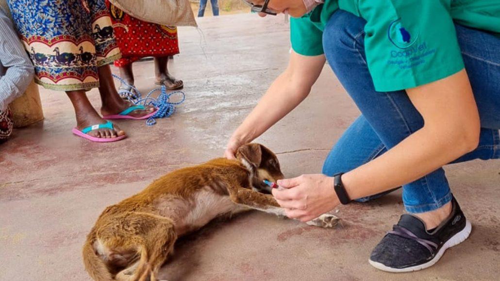 Successful Sterilization Drive Changes Lives in Xai-Xai, Mozambique! 1