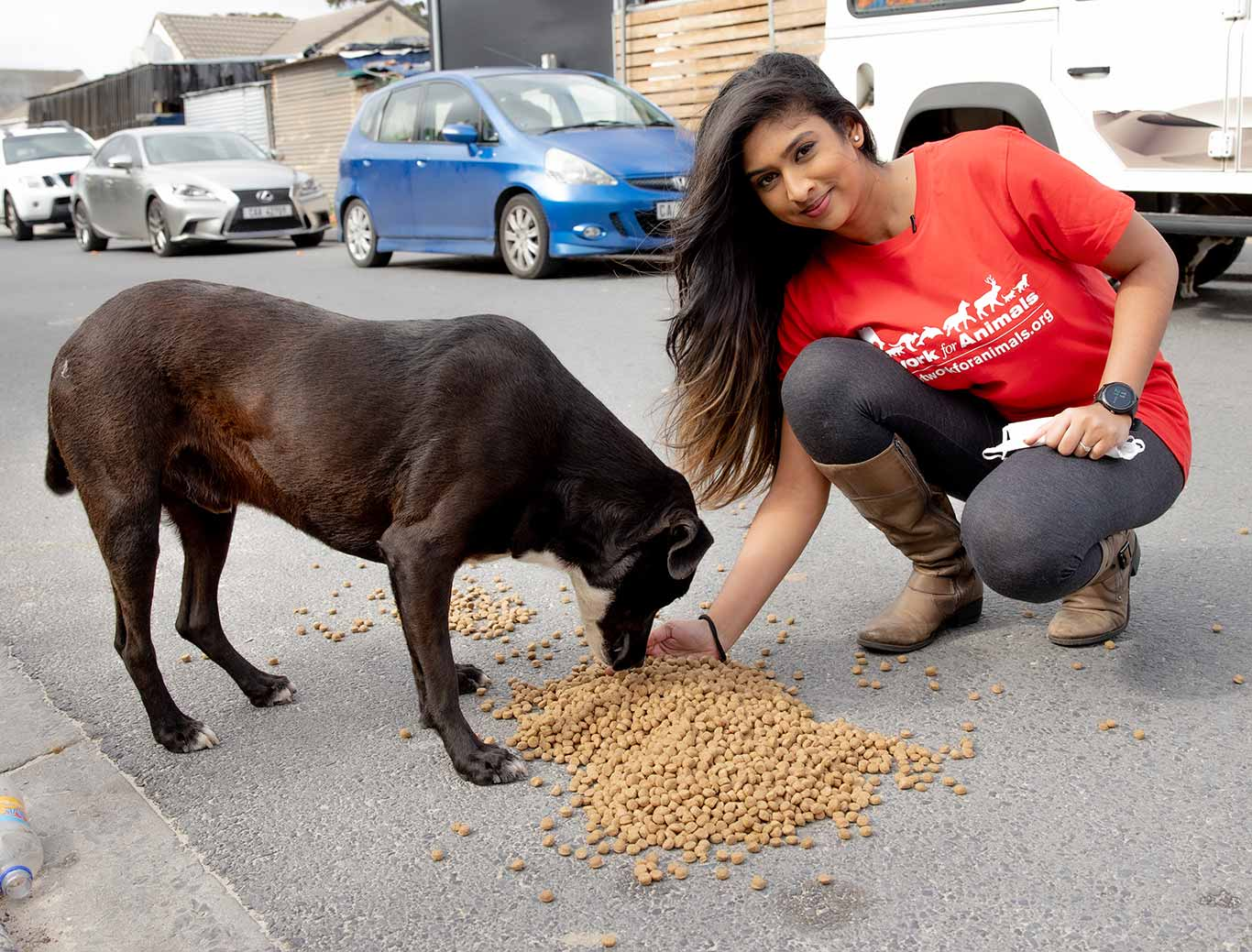 Time is running out to save 365 hungry dogs from starvation in South Africa. 2