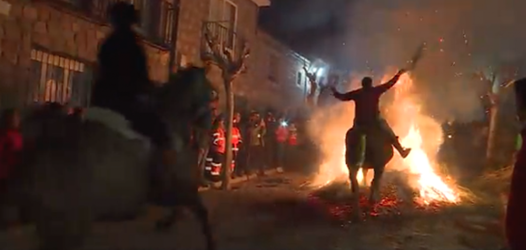 "Horses forcibly ""purified"" in Spain's bonfires 1"