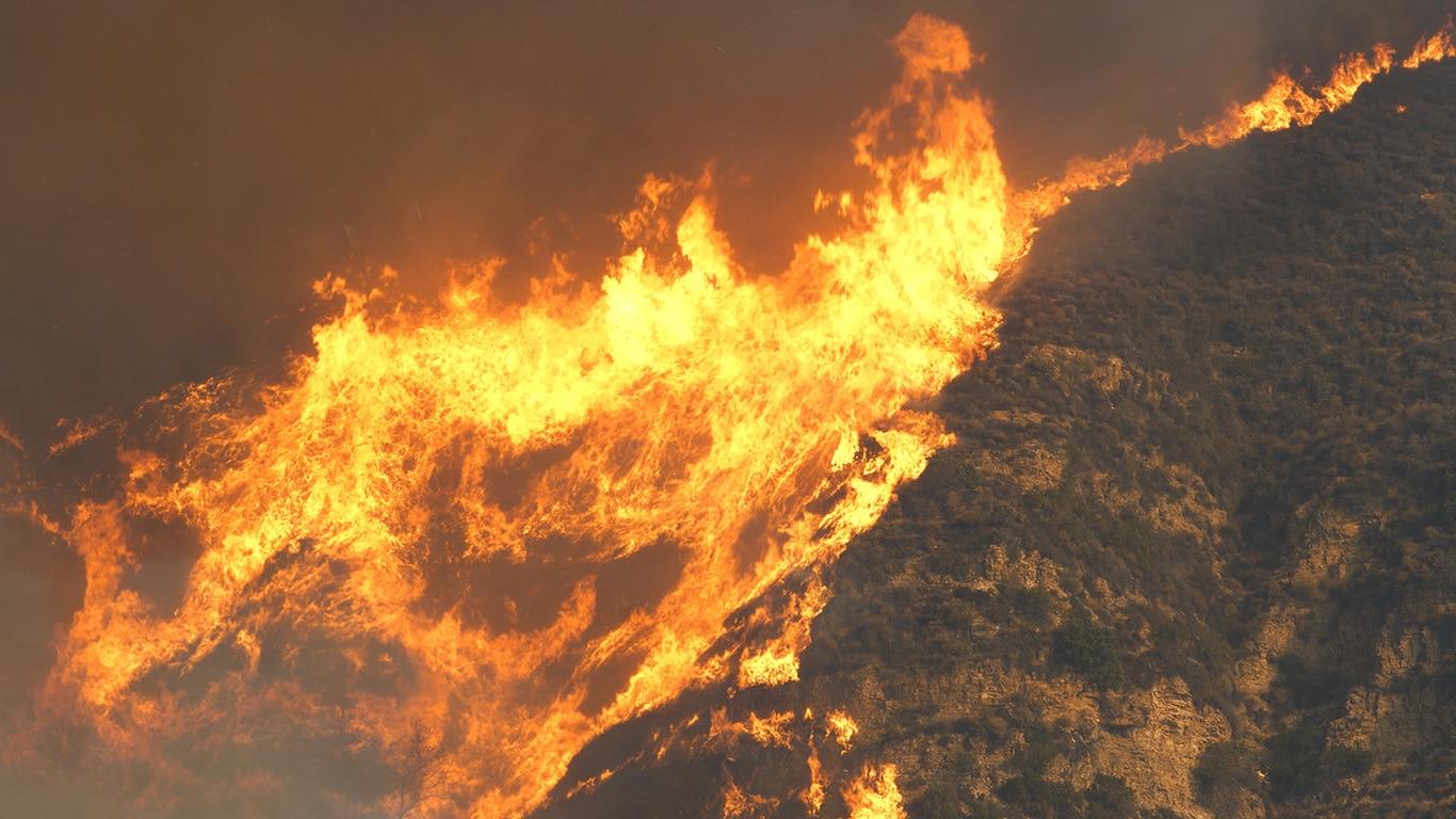 UNPRECEDENTED West Coast FIRES CONTINUE TO RAGE!Animals in MORTAL DANGER! 1