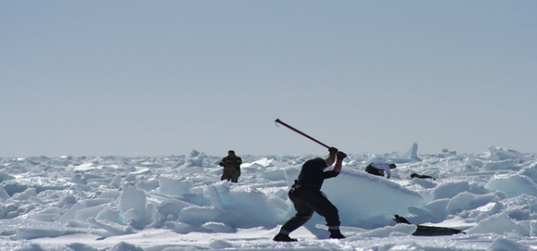 Death Knell for Seal Hunt? 9